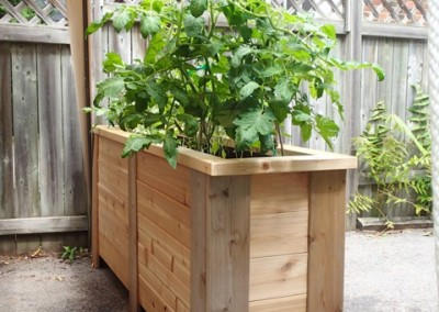 Condo Raised Garden Bed