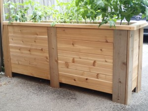Raised Garden Bed 1