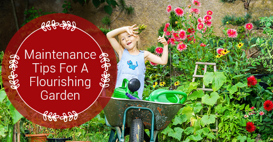 Maintenance Tips For A Flourishing Garden