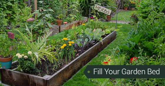 Fill Your Garden Bed