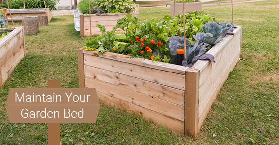 Maintain Your Garden Bed