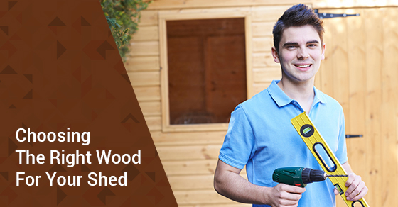 Choosing The Right Wood For Your Shed