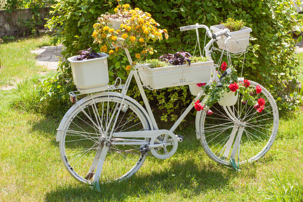 flower beds in bicycles