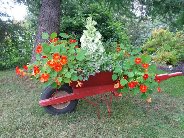 flower bed in a wagon